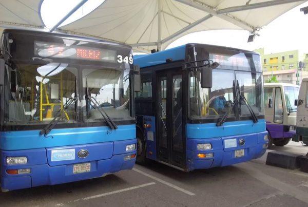 Primero bus